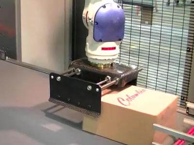 机械手预整列式码垛机
